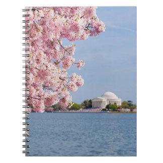 USA, Washington DC, Cherry tree Notebook