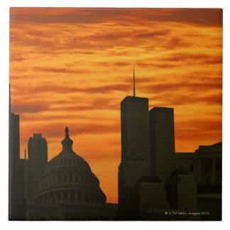USA, Washington DC, White House and World trade Tile