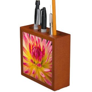 USA, Washington. Detail Of Dahlia Flower Desk Organiser