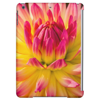 USA, Washington. Detail Of Dahlia Flower iPad Air Case