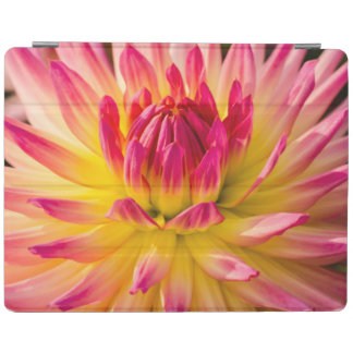 USA, Washington. Detail Of Dahlia Flower iPad Cover