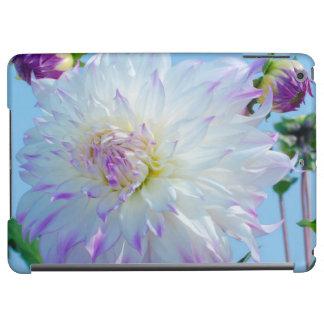 USA, Washington. Detail Of Dahlia Flowers Cover For iPad Air