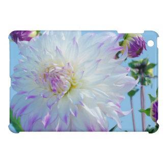 USA, Washington. Detail Of Dahlia Flowers iPad Mini Cover
