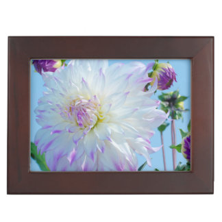 USA, Washington. Detail Of Dahlia Flowers Keepsake Box