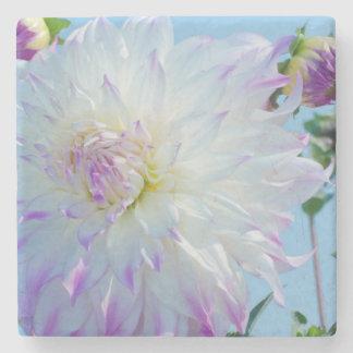 USA, Washington. Detail Of Dahlia Flowers Stone Coaster