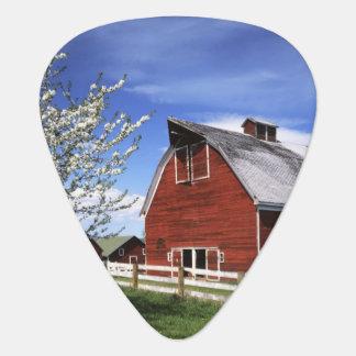 USA, Washington, Ellensburg, Barn Guitar Pick