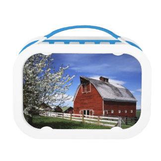USA, Washington, Ellensburg, Barn Lunch Box