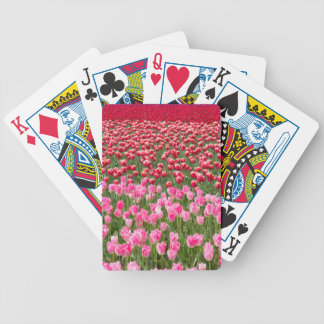 USA, Washington. Field Of Multicolored Tulips Bicycle Playing Cards