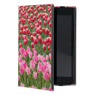 USA, Washington. Field Of Multicolored Tulips Cover For iPad Mini