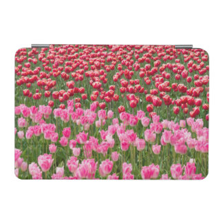 USA, Washington. Field Of Multicolored Tulips iPad Mini Cover