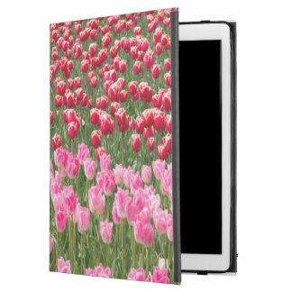 "USA, Washington. Field Of Multicolored Tulips iPad Pro 12.9"" Case"