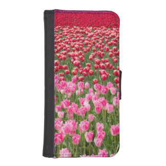 USA, Washington. Field Of Multicolored Tulips iPhone SE/5/5s Wallet Case