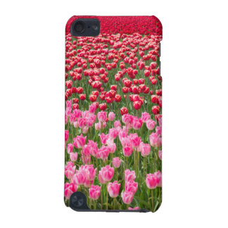 USA, Washington. Field Of Multicolored Tulips iPod Touch (5th Generation) Cases