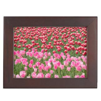 USA, Washington. Field Of Multicolored Tulips Keepsake Box