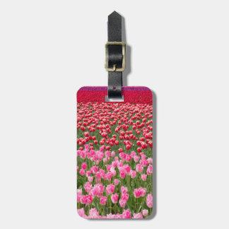 USA, Washington. Field Of Multicolored Tulips Luggage Tag
