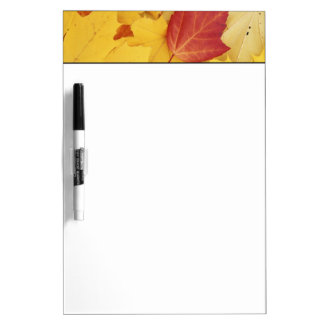 USA, Washington, Finch Arboretum, Red and Dry-Erase Boards