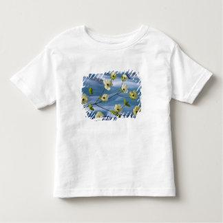 USA, Washington, Hood Canal. Pacific dogwood Toddler T-Shirt