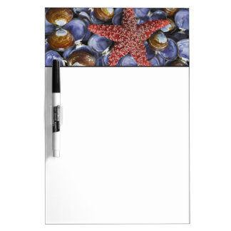 USA, Washington, Hood Canal, Seabeck. Close-up Dry Erase Board