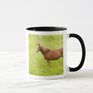USA, Washington, Horse in Spring Field, 2 Mug