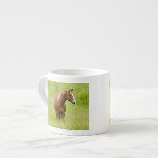 USA, Washington, Horse in Spring Field, Espresso Cup
