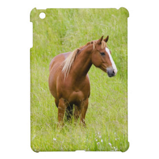 USA, Washington, Horse in Spring Field, iPad Mini Covers