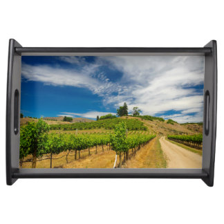 USA, Washington, Lake Chelan. Vineyard 3 Serving Tray