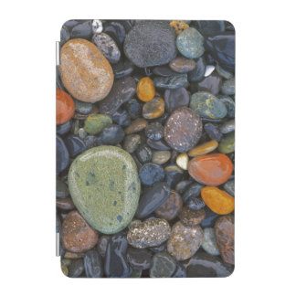 USA, Washington, Lopez Island, Agate Beach iPad Mini Cover