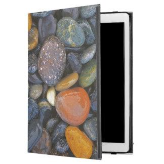 "USA, Washington, Lopez Island, Agate Beach iPad Pro 12.9"" Case"