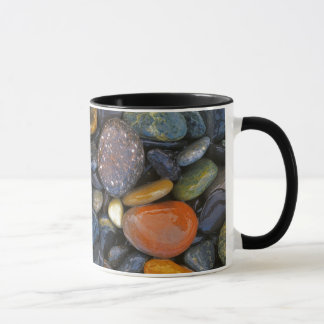USA, Washington, Lopez Island, Agate Beach Mug