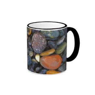 USA, Washington, Lopez Island, Agate Beach Ringer Mug