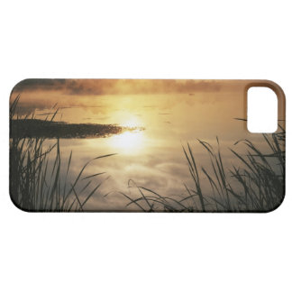 USA, Washington, Lopez Island, Morning fog on iPhone 5 Cases