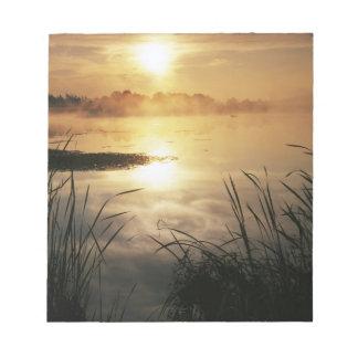 USA, Washington, Lopez Island, Morning fog on Notepad