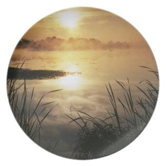 USA, Washington, Lopez Island, Morning fog on Plate