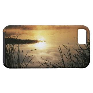 USA, Washington, Lopez Island, Morning fog on Tough iPhone 5 Case