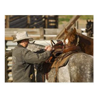 USA, Washington, Malaga, Cowboy preparing for Postcard