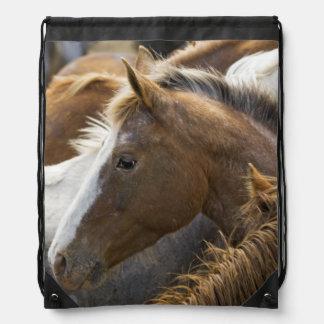 USA, Washington, Malaga, Horse head profile in Drawstring Backpacks