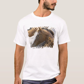 USA, Washington, Malaga, Horse head profile in T-Shirt