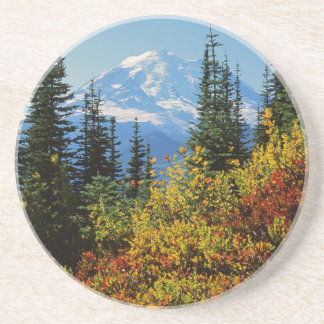 USA, Washington, Mt. Rainier National Park 2 Coaster