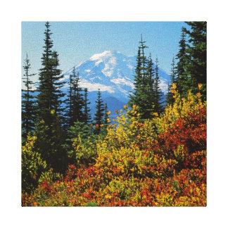 USA, Washington, Mt. Rainier National Park 2 Stretched Canvas Prints