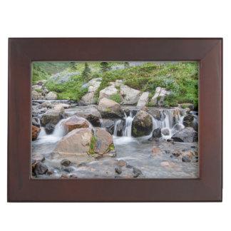 USA, Washington, Mt. Rainier National Park 3 Keepsake Box