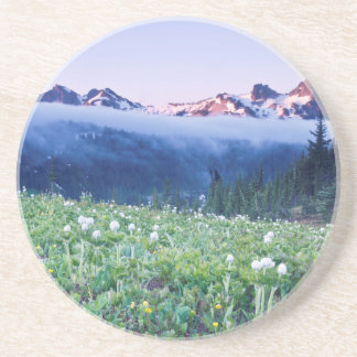 USA, Washington, Mt. Rainier National Park 4 Coaster