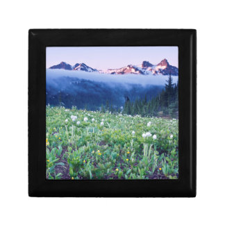 USA, Washington, Mt. Rainier National Park 4 Gift Box