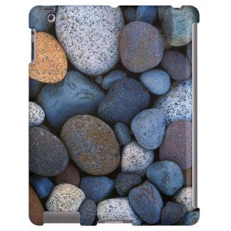 USA, Washington, Mt. Rainier National Park iPad Case