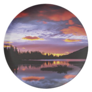 USA, Washington, Mt. Rainier National Park, Party Plates