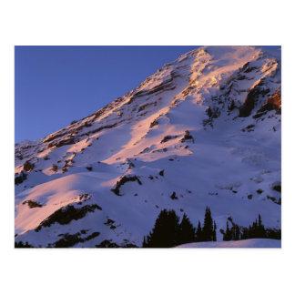 USA, Washington, Mt. Rainier National Park Postcard