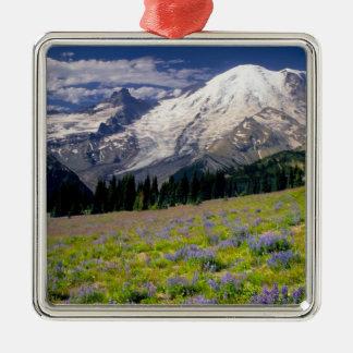 USA, Washington, Mt. Rainier National Park. Silver-Colored Square Decoration