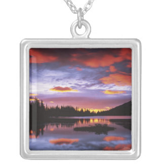 USA, Washington, Mt. Rainier National Park, Silver Plated Necklace