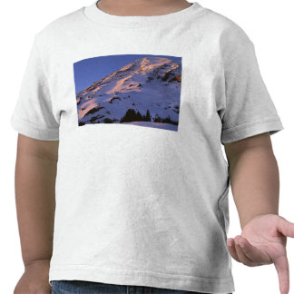 USA, Washington, Mt. Rainier National Park T-shirt