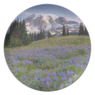 USA, Washington, Mt. Rainier NP, Mt. Rainier and Plate
