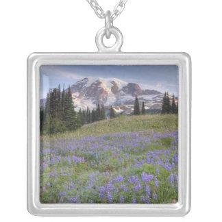 USA, Washington, Mt. Rainier NP, Mt. Rainier and Silver Plated Necklace